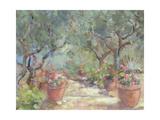 Garden in Porto Ercole, Italy, 1996 Giclee Print by Karen Armitage