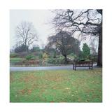 Regent's Park Giclee Print by John Nash