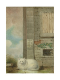 White Persian Cat Giclee Print by Laslett John Pott