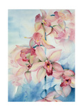 Orchid Cymbidium Ramley Giclee Print by Karen Armitage