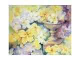 Polyanthus at Hurst Giclee Print by Karen Armitage