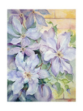 Clematis, the President Giclee Print by Karen Armitage