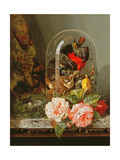 Still Life with Humming Bird in a Glass Dome Giclee Print by Edward Pritchett