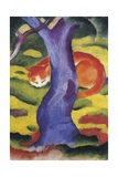 Cat Behind Tree Giclee Print by Franz Poledne