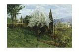 Almond Blossom Giclee Print by Luigi Nono