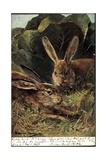 Glückwunsch Ostern, Zwei Hasen in Der Natur Giclee Print