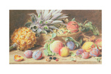 Still Life with Fruit Giclee Print by William Henry Margetson
