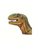 Illustration of Allosaurus, Close Up of Head Giclee Print