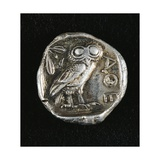 Tetradrachm from Time of Battle of Marathon Depicting Athena as Owl, Greek Coins, 5th Century BC Giclee Print