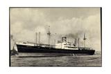 Dampfer S.S. Soestdijk, Holland America Line Giclee Print