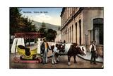 Madeira Portugal, Carro De Bois, Ochsenkarren Auf Schlitten Giclee Print