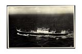 Knsm, M.S. Willemstad, Oranjestad, Dampfschiff Giclee Print