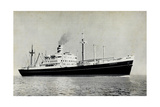 Dampfer S.S. Diemerdyk, Holland America Line Giclee Print