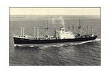 Dampfer S.S. Andyk, Holland America Line Giclee Print