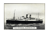 T.S.S. Arandora, Blue Star Line, Dampfschiff Giclee Print