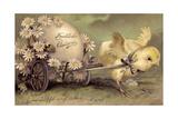 Glückwunsch Ostern, Küken Mit Osterei, Gänseblümchen Giclee Print