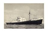 Dampfer M.V. Dongedyk Holland America Line Giclee Print
