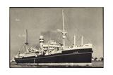 Dampfer S.S. Edam, Holland America Line Giclee Print