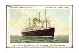 Dampfer T.S.S. Nieuw Amsterdam, Holland America Line Giclee Print