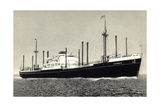Dampfer M.S. Sloterdyk, Holland America Line Giclee Print