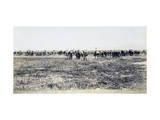 Eritrea, Ailet, the Second Cagni Brigade in Reconnaissance Giclee Print