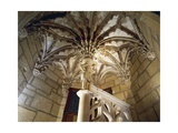Detail from Vault of Staircase of Palazzo Chambellan of Dijon Giclee Print