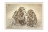 Künstler Swildens, Zwei Schimpansen Mit Kokosnüssen, Bananen Giclee Print