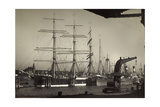 Hamburger Hafen, Viermast Bark Padua, Segelschiff Giclee Print