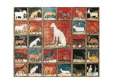 Book of Mammals, Miniature from the Book of the Properties of Things by Jean Cordichon Giclee Print