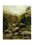 View of Scopeti Through Rocks Giclee Print by Carlo Ademollo