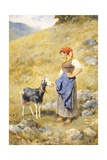 Shepherdess Giclee Print by Niccolo Cannicci