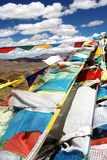 Prayer Flags Tibet, 2011 Photographic Print by Shaun Taylor McManus