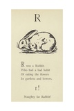 The Letter R Giclee Print by Edward Lear