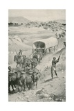 The Great Boer Trek to Natal in 1835-36 Giclee Print by Walter Stanley Paget