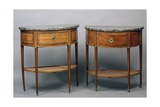 Pair of Louis XVI Style Crescent Shaped Console Tables, France Giclee Print