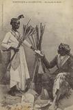 Martinique and Guadeloupe - Brush Merchants Lámina fotográfica