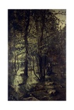 In the Wood Giclee Print by Ernesto Rayper