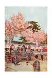 The Feast of the Cherry Blossoms Giclee Print by Ella Du Cane