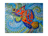 Mandarin Fish, 2013 Giclee Print by Maylee Christie