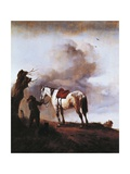 White Horse, 1646 Giclee Print by Philips Wouwerman