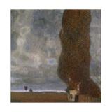The Large Poplar II, Gathering Storm, 1902-03 Giclee Print by Gustav Klimt