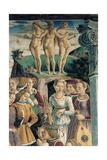 Allegory of April: Triumph of Venus, 1466 - 1470 Giclee Print by Francesco del Cossa