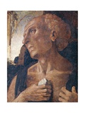 St. Jerome Giclee Print by Luca Signorelli