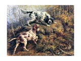 Pointer, Setter and Grouse Giclee Print by Edmund Henry Osthaus