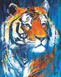 Nala Affiches par Stephen Fishwick