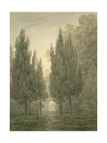 In the Gardens of the Villa Pamphili Giclee Print by John Robert Cozens