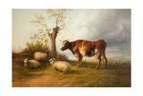 View in Stour Valley with Cow Giclee Print by Thomas Sidney Cooper