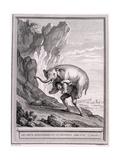 Les Deux Avanturiers Et Le Talisman, C.1755-1759 Giclee Print by Jean-Baptiste Oudry