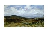 Landscape Giclee Print by Giovanni Muzzioli