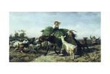 The Embarrassed Donkey, 1856 Giclee Print by Filippo Palizzi
